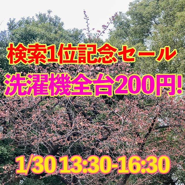 1月30日(木)13:30-16:30検索1位記念セール