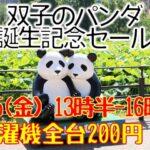 上野動物園のシンシンを応援!双子のパンダ誕生記念セール開催!!