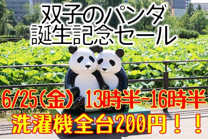 双子のパンダ誕生記念セール